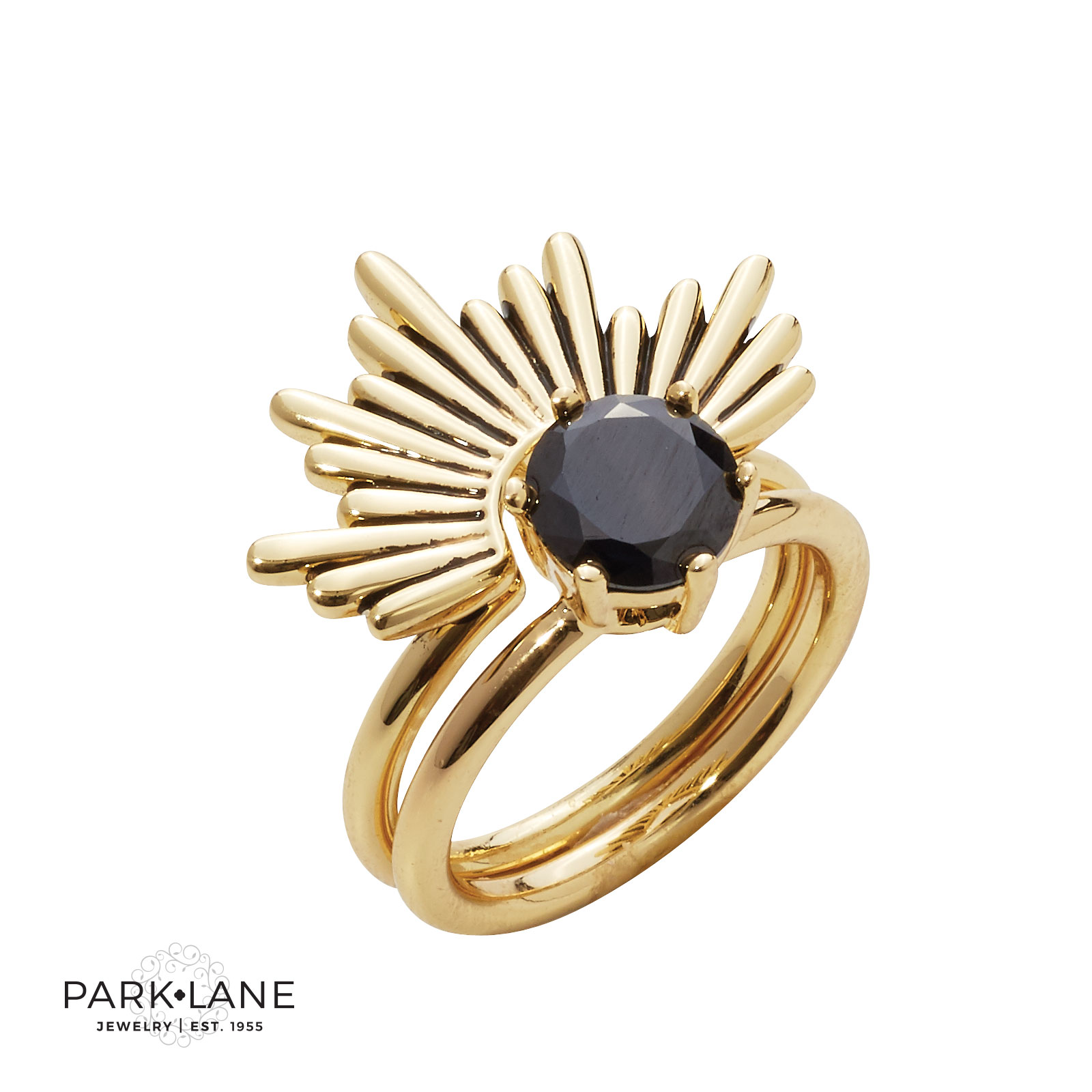 Park Lane Jewelry Shop our rings